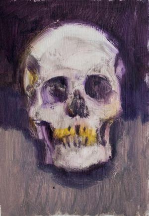 Skull Study 6
