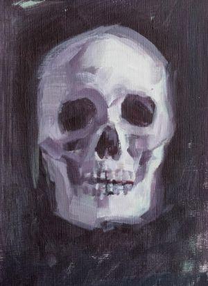 Skull Study 7