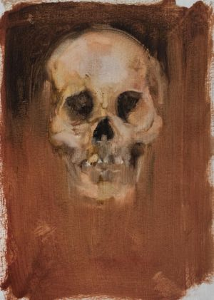 Skull Study 3
