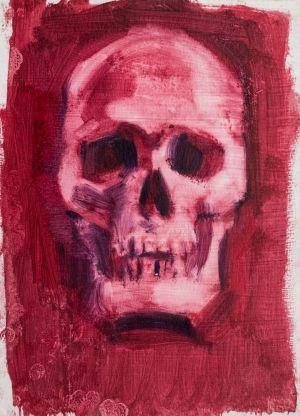 Skull Study 4