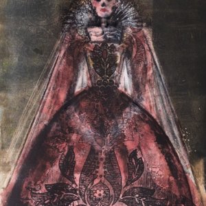 Damask Queen - Fiona Wilson Fine Art Printmaking