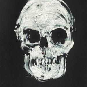 Indigo Skull - Fiona Wilson Fine Art Printmaking