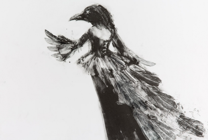 Winter Plumage - Fiona Wilson Fine Art Printmaking